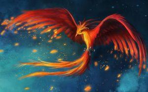 Sibo Phoenix