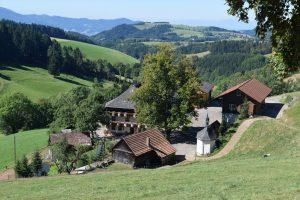 Schwarzwaldbauernhof bei St. Peter