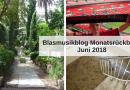 Blasmusikblog Monatsrückblick Juni 2018