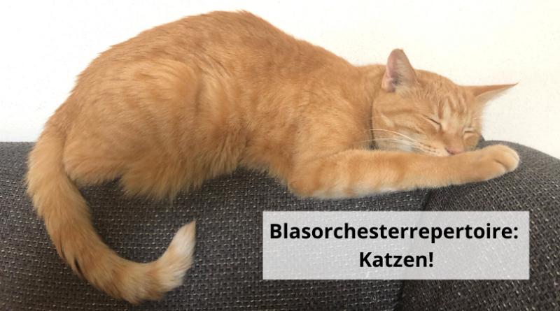 Blasorchesterrepertoire Katzen